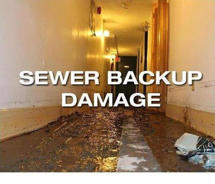 Biohazard SERVPRO Tips on How To Prevent Sewage Back-ups