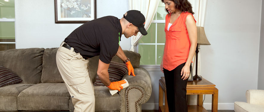 Monroe, NC carpet upholstery cleaning